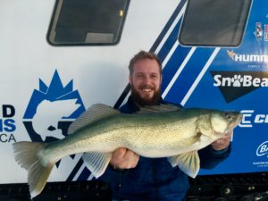 30 inch Lake Winnipeg Walleye | Icebound Excursions